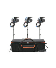 Tungsten Studio Lights Kit 3 x Junior Fresnel 650W